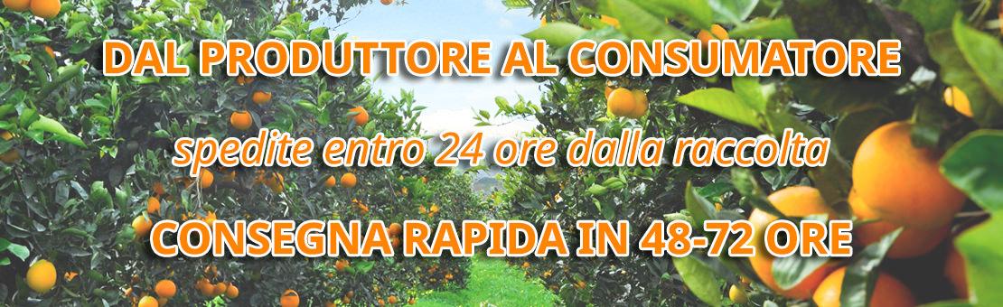 Vendita Arance di Ribera direttamente dal produttore al consumatore